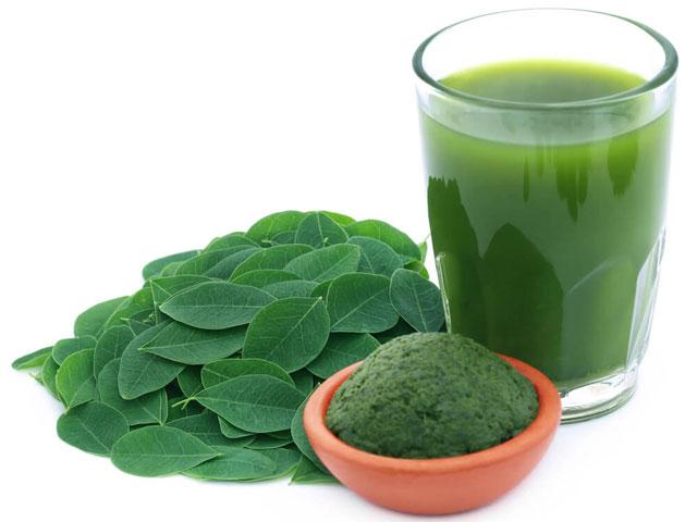 モリンガパウダー・モリンガ茶の味やダイエット効果