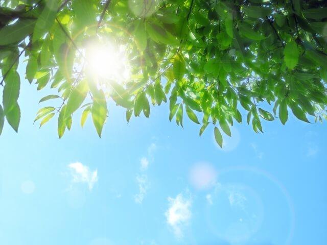 日光を浴びる睡眠負債対策