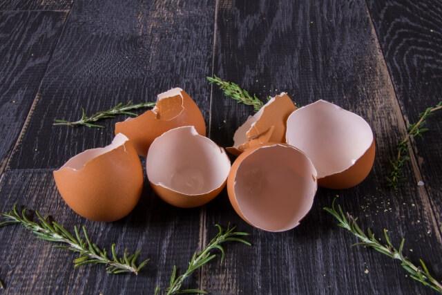 シスチンが豊富な卵殻膜