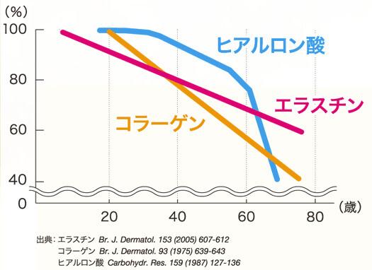 年齢と共に減少するエラスチンとコラーゲン、ヒアルロン酸